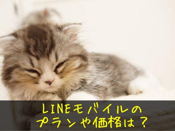 LINEモバイル 価格