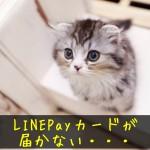 LINEPayカードが届かない4つの原因や解決方法