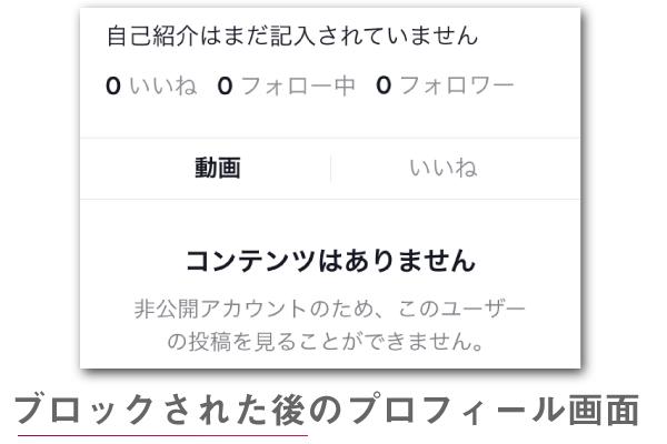 TikTokはブロックされるとプロフィール画面の詳細情報が見れなくなる