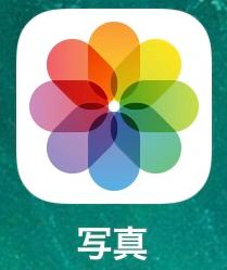 iPhone 写真